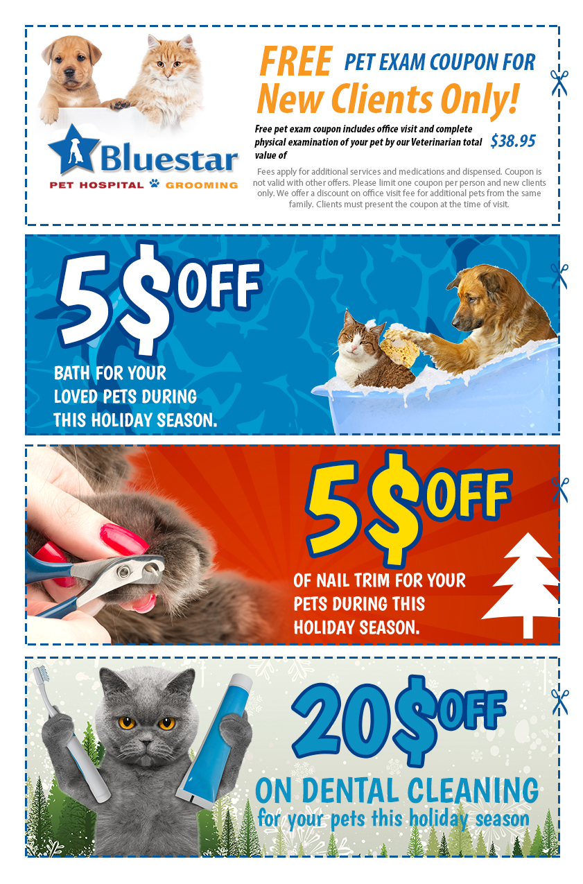 This holiday season Discounts and Coupons from Bluestar Pet Hospital & Grooming
