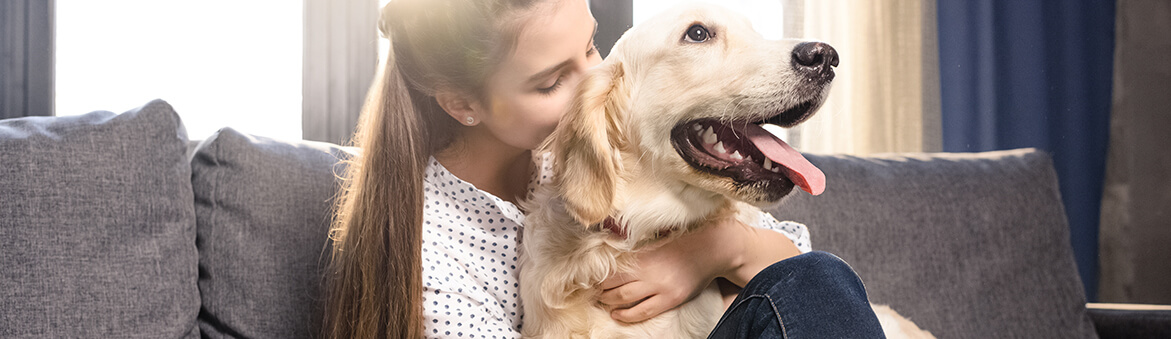"""Dermatology for Pets in St. Johns, FL Area: Proactive Care is More than a """"shiny Coat,"""" Which Supports a Healthy Life."""